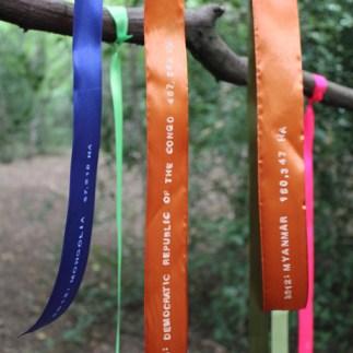 True Colours0112