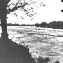 49° Anniversario Dell'Alluvione Dell'Arno 1966