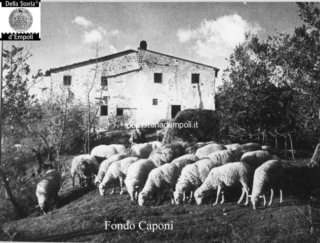 Fondo Caponi Empoli, Vol 1 Pagina 27: Vita Di Campagna E Il Guadagnoli.
