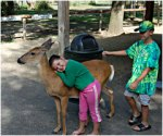Deer Park As Presented By Meadowbrook Resort & Dells Packages In Wisconsin Dells
