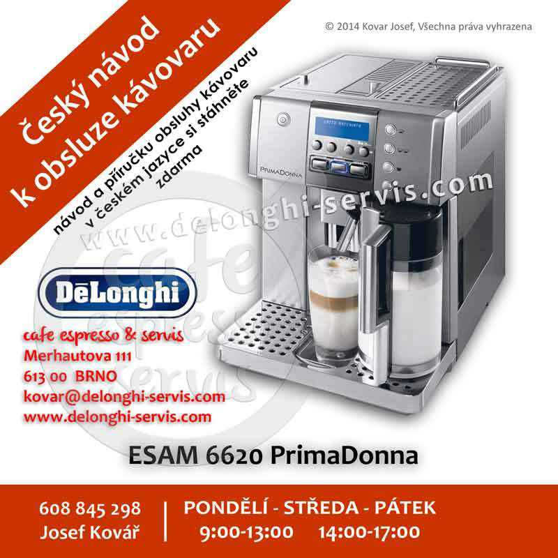 delonghi magnifica 3500 manual pdf