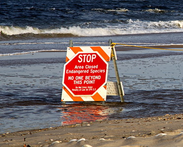 STOP - Area Closed