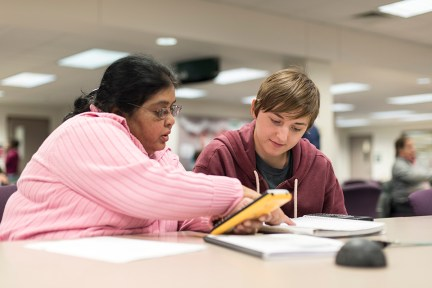 A tutor tutoring a student