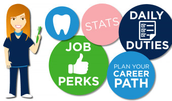 Looking to be a dental hygienist? This infographic can help guide you there: