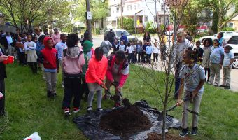 Dentis-Trees Program: Planting Trees, Spreading Smiles