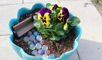 DIY: Make a Tooth Fairy Garden