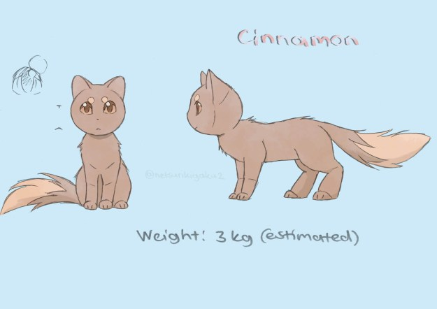 Character introduction of Cinnamon