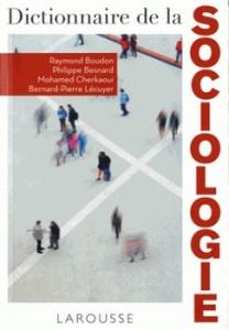 Dictionnaire de la sociologie 208x300 - Une synthèse claire et un panorama complet