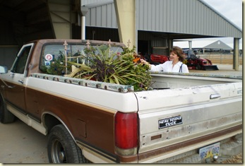 felder's trucker 040