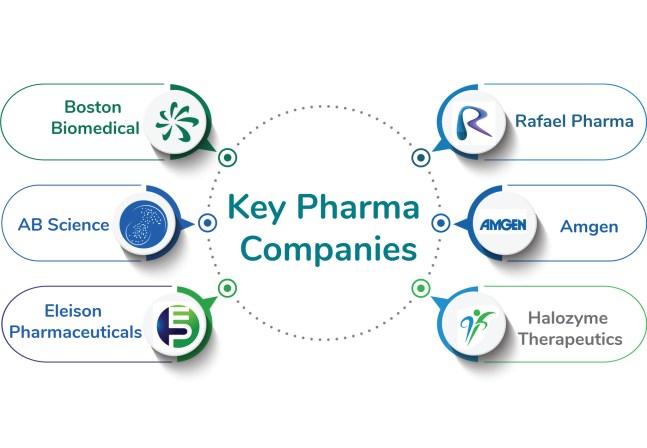 Key Pharma Companies in Pancreatic cancer market