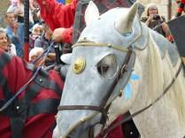 Un autre preux chevalier !