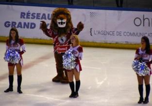 Le Lion et les pom-pom girls.