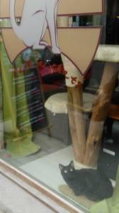 Le bar à chats se situe dans le quartier de la Croix-Rousse.