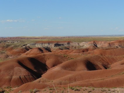 Painted Desert Arizona (10)