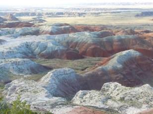 Painted Desert Arizona (15)
