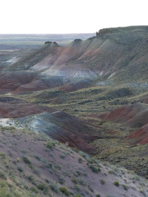 Painted Desert Arizona (18)