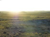 Painted Desert Arizona (7)