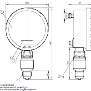 Capteur de pression Ifm PG2455