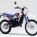 Manual del usuario de la Yamaha dt 50