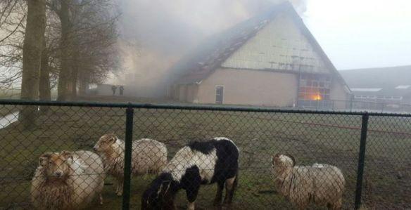 'Brand aan de Schervenweg' - Foto: RTVNH/Henk Prins