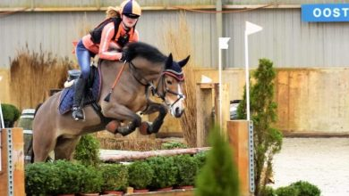 Photo of Indoor paardencross spektakel in Middenmeer