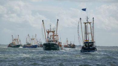 Photo of Ook Flora en Visserijdagen uit de agenda geschrapt
