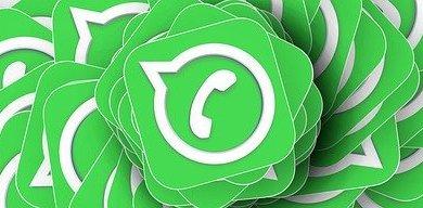Photo of Whatsapp groep Wieringen/Wieringermeer voor hulp aan dieren