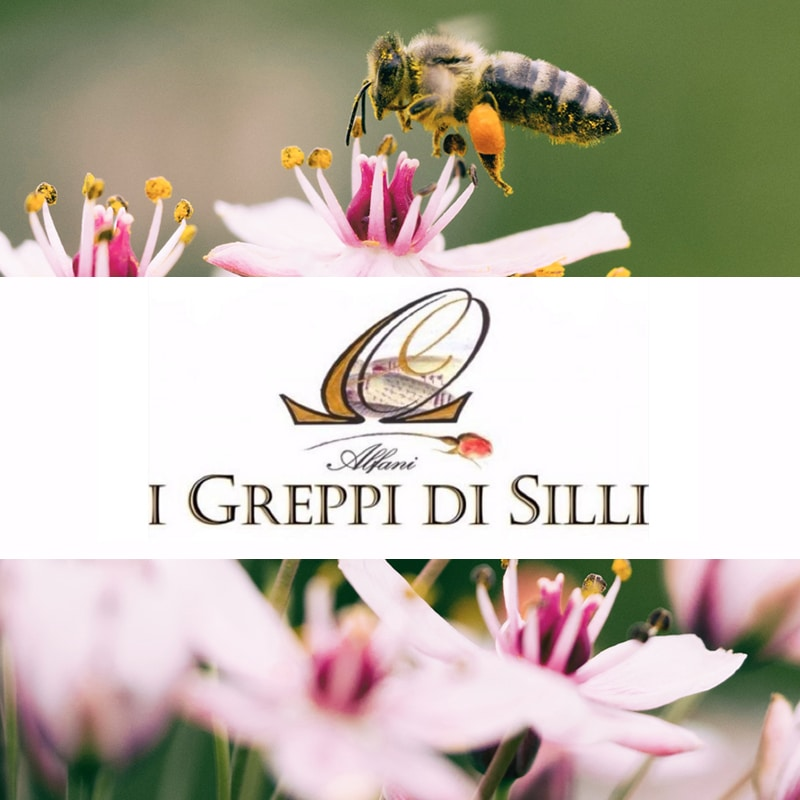 I Greppi Di Silli Honey Chianti