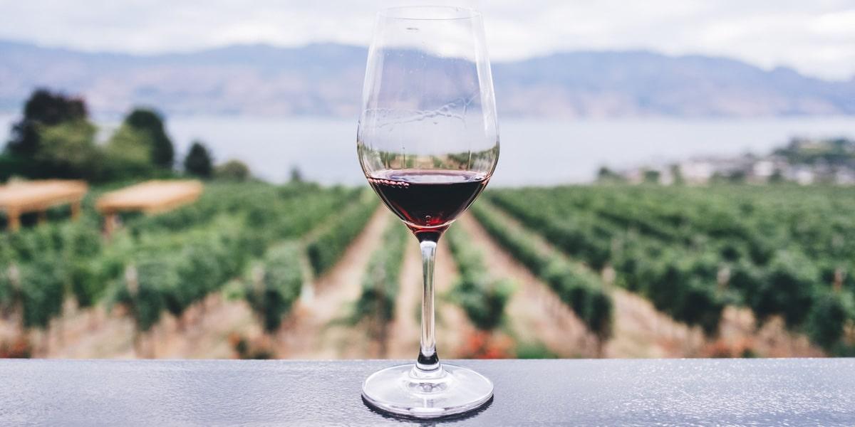Demetra Chianti Wine Tour
