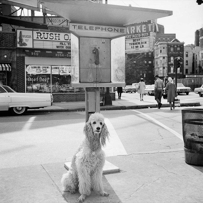 new york chicago street photography vivian maier 12 - Fotos perdidas de Vivian Maier do dia a dia americano nas décadas de 50 e 60