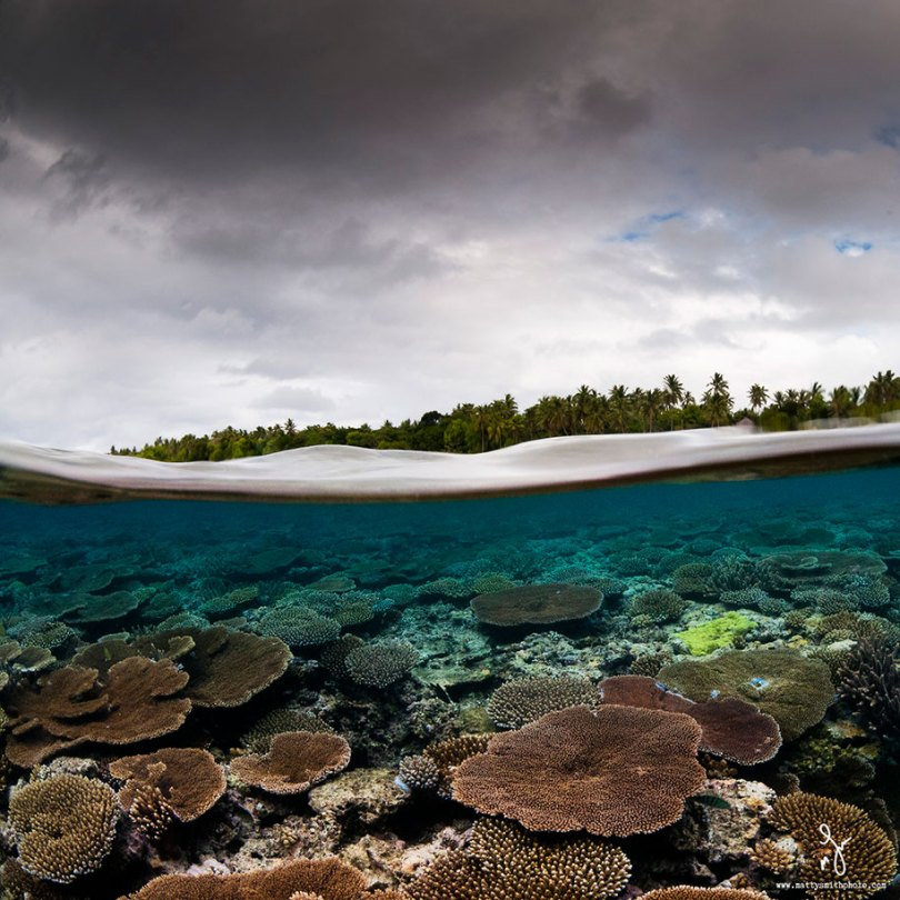 surface half underwater photography over under matty smith 3 - Fotografias espetaculares subaquáticas de Matty Smith