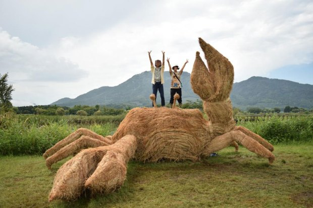 Straw Sculptures Wara Festival Niigata Japan Gigantic Crab