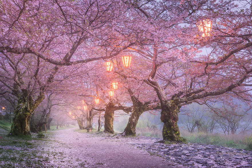 beautiful-places-tourist-attractions-japan-9