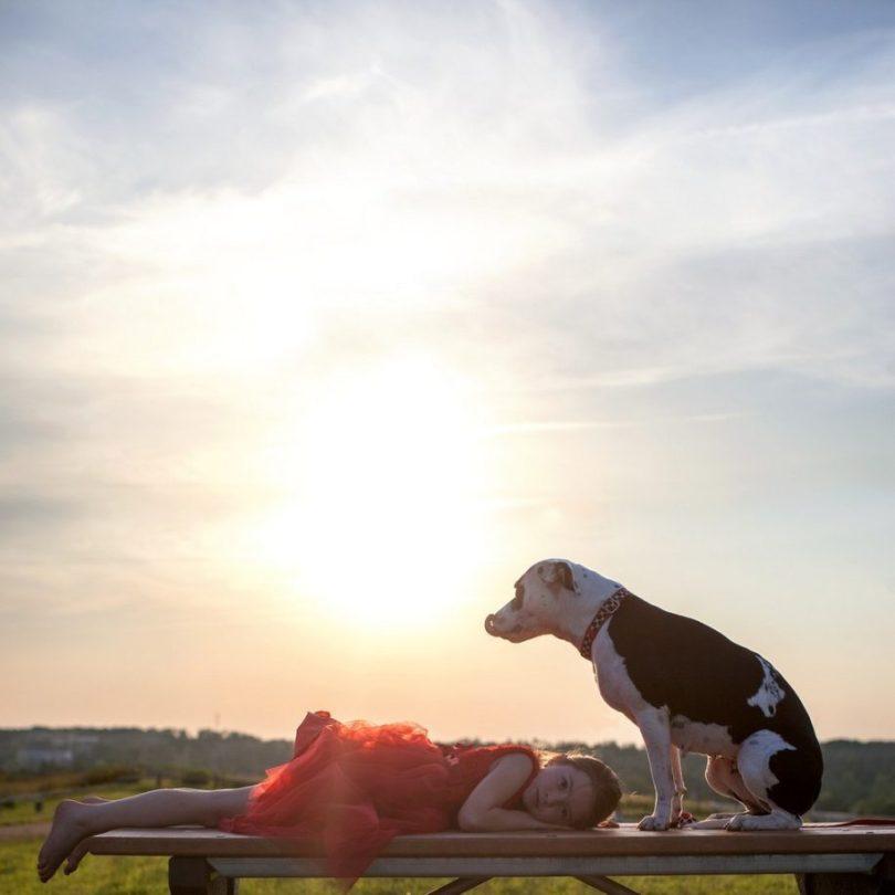 2 2 915x915 - Fotógrafa tira fotos de cães abandonados em abrigo