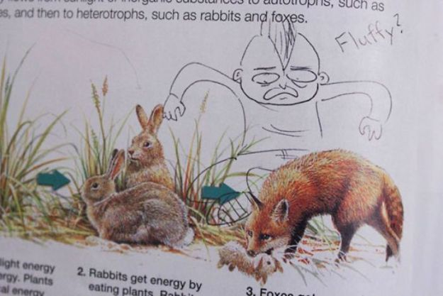 599c347a9e6be-funny-textbook-drawings-200-599aa70174793__700 10+ Examples Of Brilliant Textbook Vandalism When Bored Students Couldn't Stop Their Creativity Random