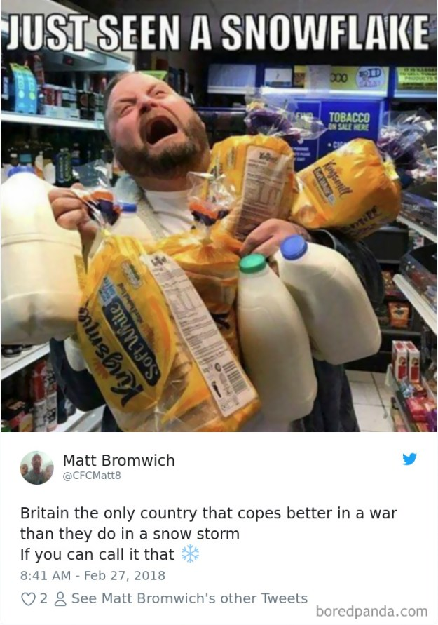 5a9d483c04364-snow-uk-panic-twitter-reactions-12-5a994d07667af__700 Internet Reacts To Brits Panicking Over A Little Snow In A Very Creative Way Random