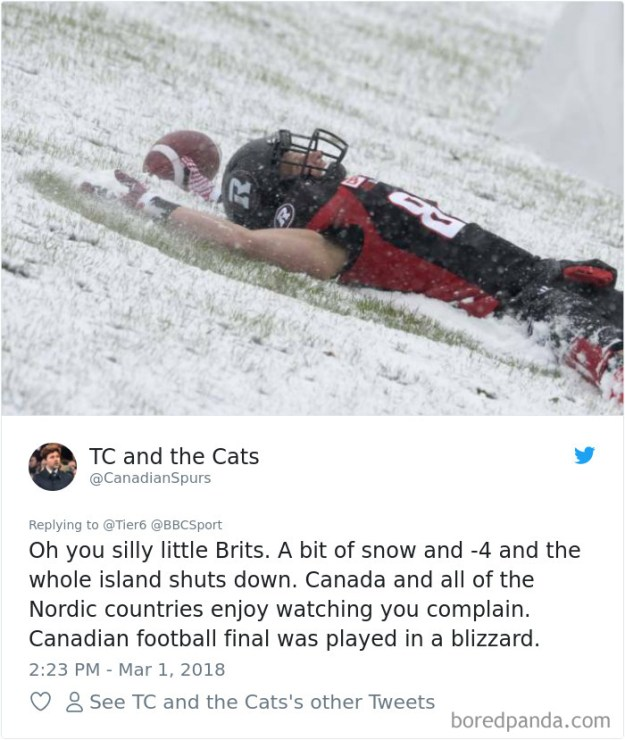 5a9d483e85d19-969216679103250432-png__700 Internet Reacts To Brits Panicking Over A Little Snow In A Very Creative Way Random