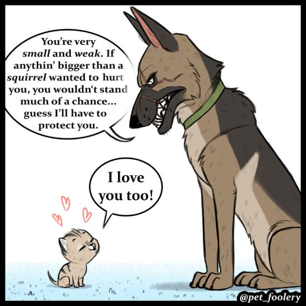 5bbb6f8de1dca-funny-animal-comics-adventures-dogs-pixie-brutus-pet-foolery-5-5bb204777d9a6__700 Adorable Comics About An Old Military Dog And A Little Kitten That Will Warm Your Heart Random