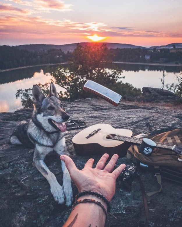 5bc58f45843ad-Bl3FTmTnhz5-png__700 20+ Pictures Of A Guy Petting His Dog For Those Tired Of #FollowMeTo Instagram Pics Photography Random