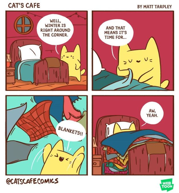 5bf6705bd9b6e-A-Cats-Caf-for-Everyone-5bf3de69a5048__880 47 Wholesome 'Cat's Cafe' Comics That Will Brighten Your Day Random