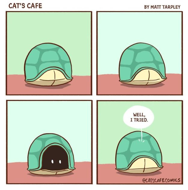 5bf670613d588-A-Cats-Caf-for-Everyone-5bf3de6f4e30d__880 47 Wholesome 'Cat's Cafe' Comics That Will Brighten Your Day Random