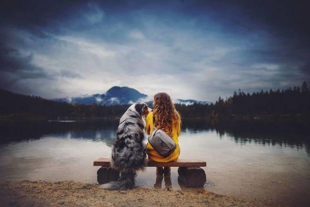 5c07def5b0997-Bqjut7RhSWh-png__880 50 Beautiful Photos Of Dogs Taken By Czech Photographer Kristýna Kvapilová Photography Random