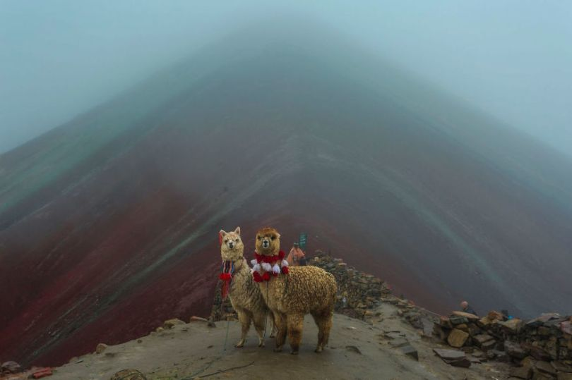5d03469abfe60 national geographic travel photo contest 2019 5d01f9215f9c9  880 - Vencedoras do Concurso de Fotografia de Viagem da National Geographic 2019