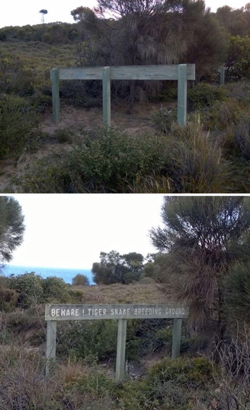 5d3020e2eca63 australia scary nature animals 100 5d25ef7497f16  700 - 40 Fotos que provam que a Australia não é para qualquer um