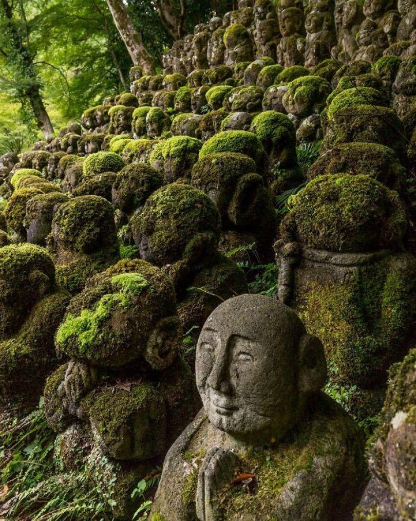 5d3020fa3a6e4 BxkBX1gAz05 png  700 - Poder da Natureza - Quando a paisagem já faz parte da natureza