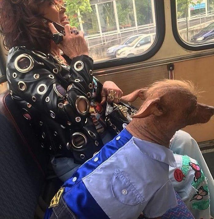 5dc3d4bb5c72a BjKgZBVhUyF png  700 - Conta do Instagram compartilha as coisas mais estranhas do transporte público