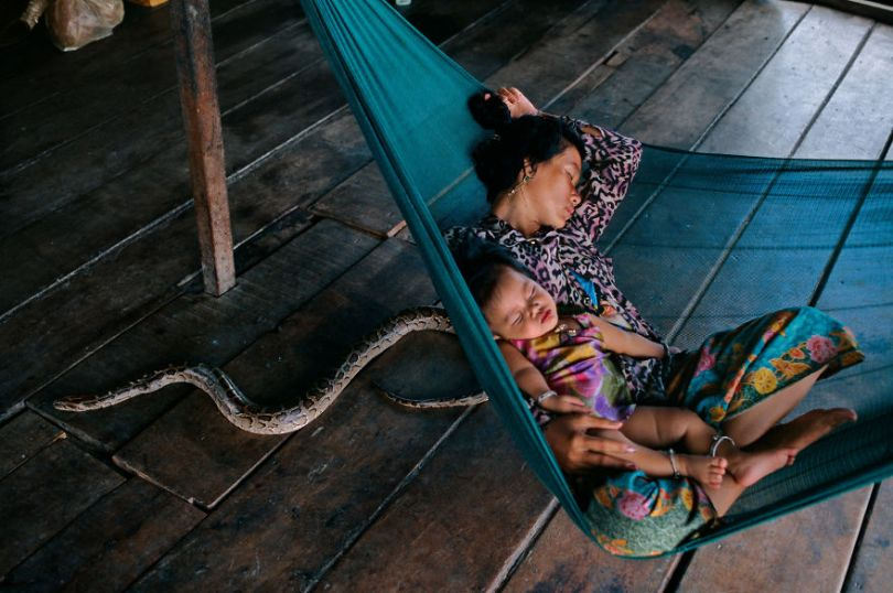 5dce5d233558f x 5dc9d57f27fc3  880 - 40 fotografias de Steve McCurry que exploram a relação entre humanos e animais