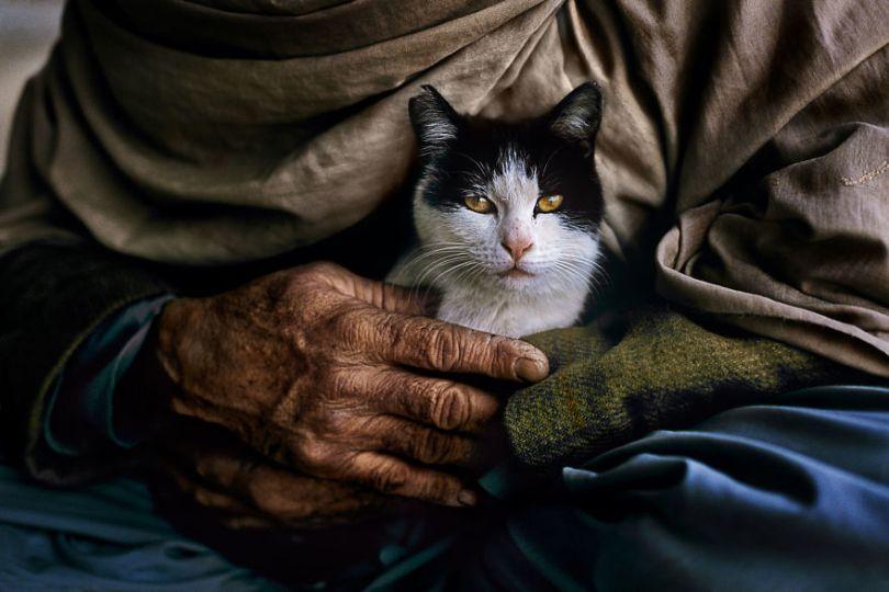 5dce5d235b1a7 AFGHN 12443 5dc9d15c0ec97  880 - 40 fotografias de Steve McCurry que exploram a relação entre humanos e animais
