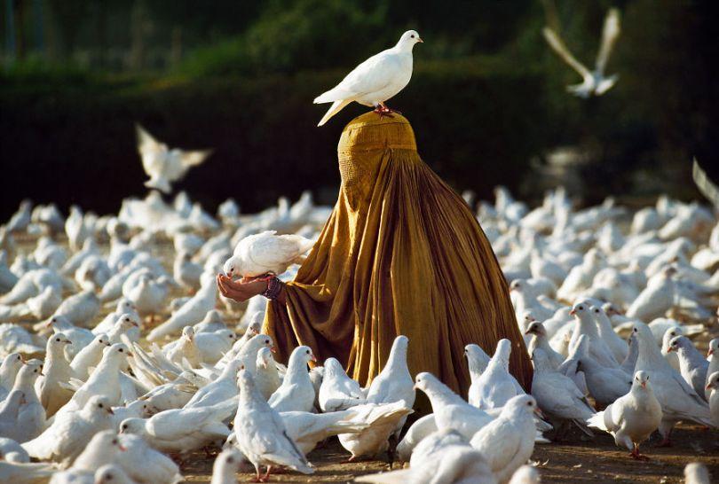 5dce5d23ce1e9 x 5dc9da76287ec  880 - 40 fotografias de Steve McCurry que exploram a relação entre humanos e animais