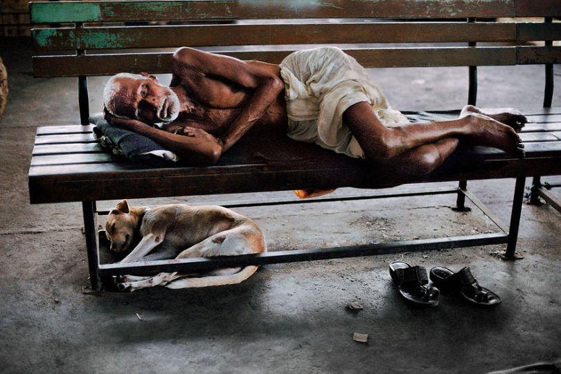 5dce5d241e442 x 5dc9e0d628a83  880 - 40 fotografias de Steve McCurry que exploram a relação entre humanos e animais